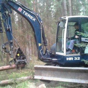 Holzarbeit im Wald